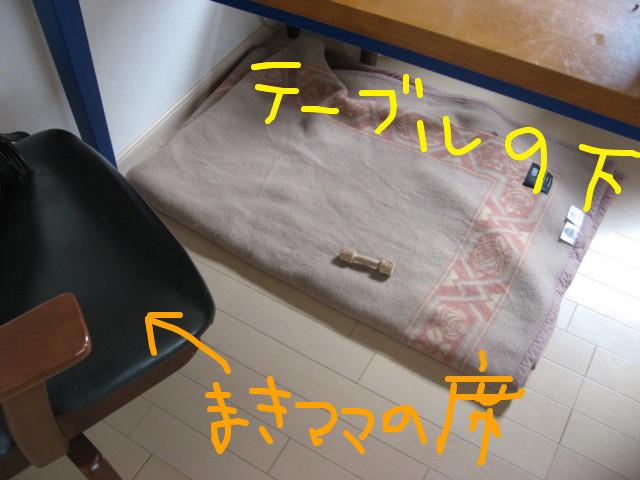 f:id:maki-mama:20090309112601j:image:w300