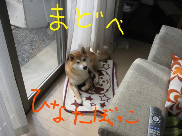f:id:maki-mama:20090309131151j:image:w300