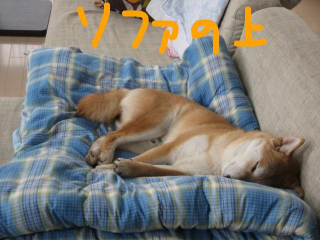 f:id:maki-mama:20090310122443j:image:w300