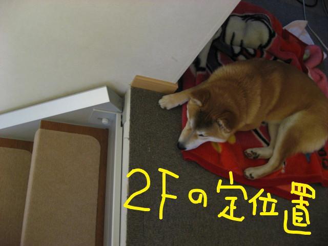 f:id:maki-mama:20090310122451j:image:w300