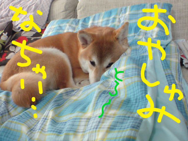 f:id:maki-mama:20090311115425j:image:w300