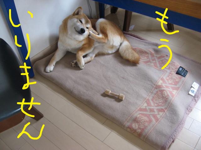 f:id:maki-mama:20090311115551j:image:w300