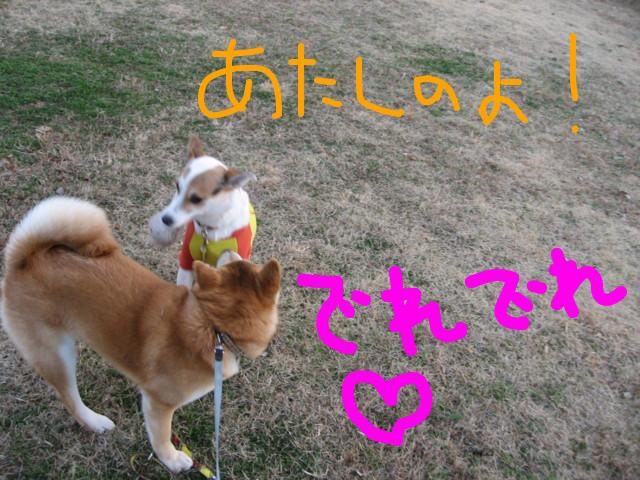 f:id:maki-mama:20090312074258j:image:w300
