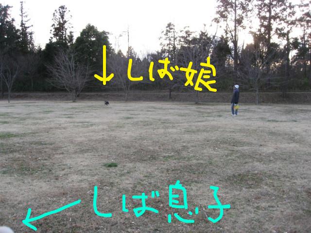 f:id:maki-mama:20090312074259j:image:w300