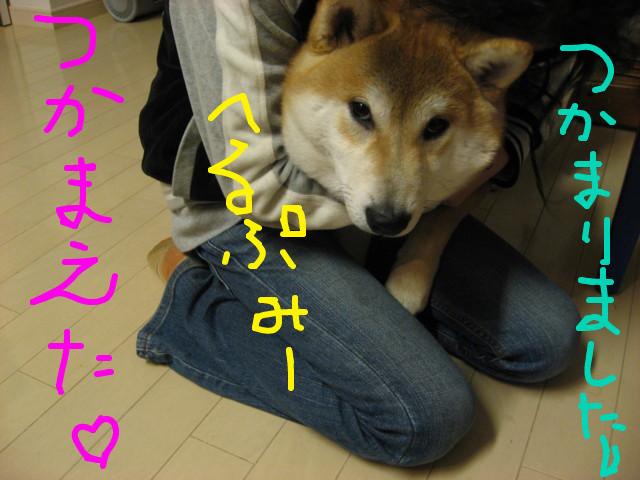 f:id:maki-mama:20090312074303j:image:w300