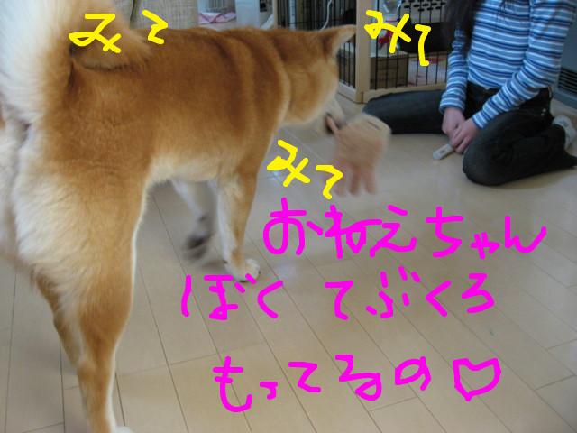 f:id:maki-mama:20090312074304j:image:w300