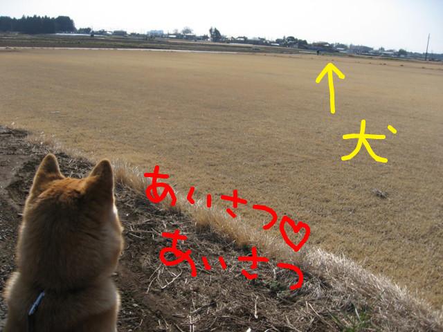 f:id:maki-mama:20090312095850j:image:w300