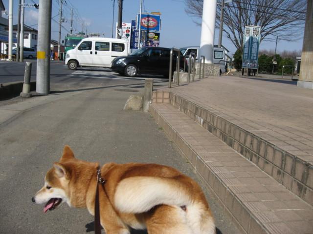 f:id:maki-mama:20090312095855j:image:w300