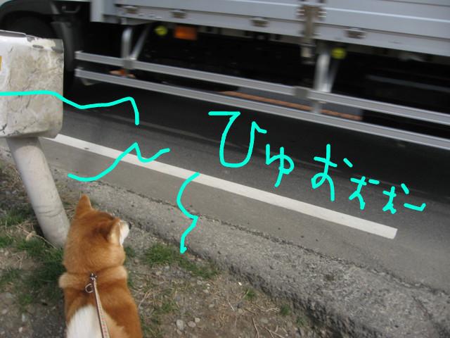 f:id:maki-mama:20090313111150j:image:w300