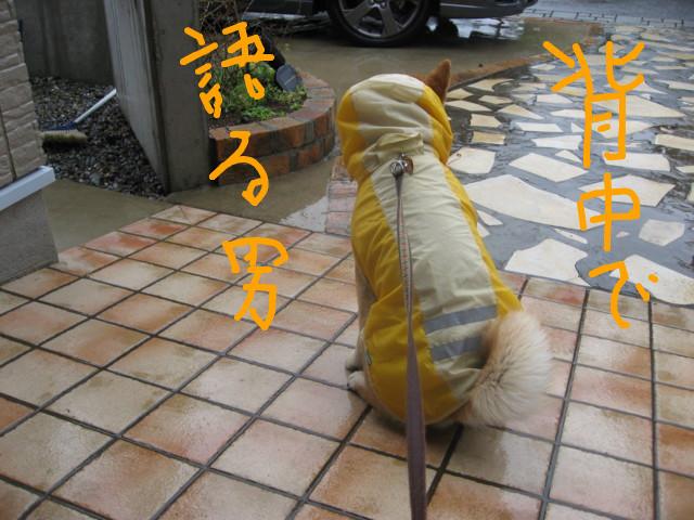 f:id:maki-mama:20090314090044j:image:w300