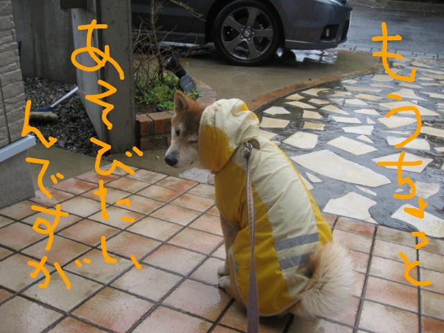 f:id:maki-mama:20090314090045j:image:w300