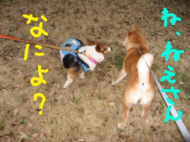 f:id:maki-mama:20090314090047j:image:w300