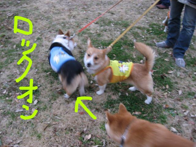 f:id:maki-mama:20090314090048j:image:w300