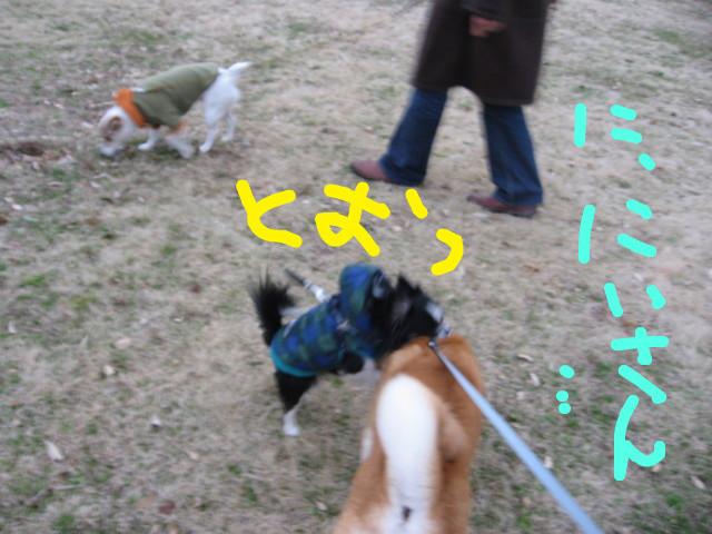 f:id:maki-mama:20090314090049j:image:w300