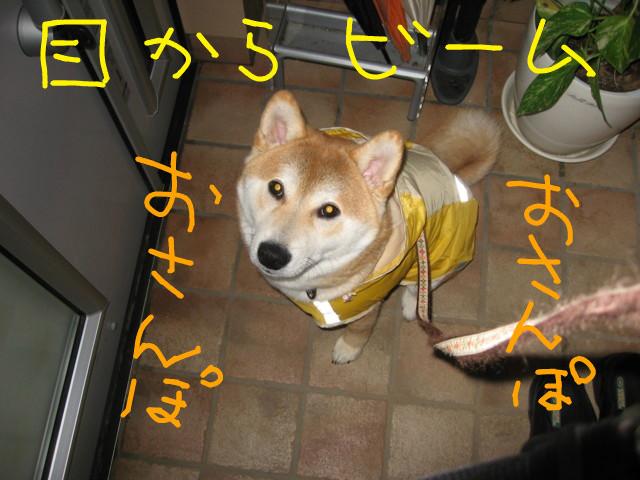 f:id:maki-mama:20090314090050j:image:w300