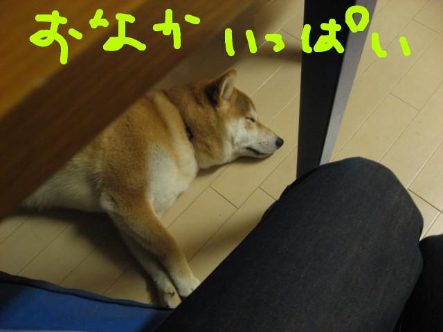 f:id:maki-mama:20090316213458j:image:w300