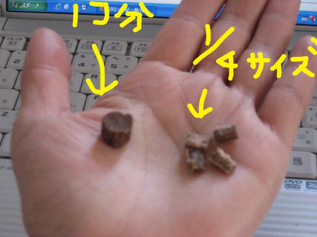 f:id:maki-mama:20090318135346j:image:w300
