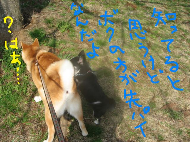 f:id:maki-mama:20090319102607j:image:w300