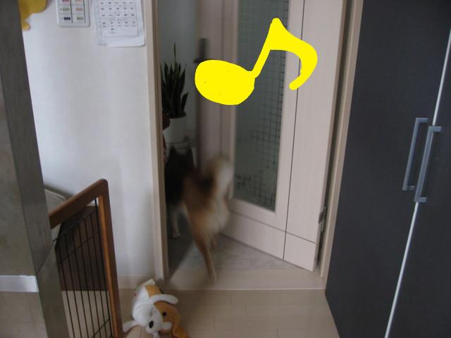 f:id:maki-mama:20090323160618j:image:w300