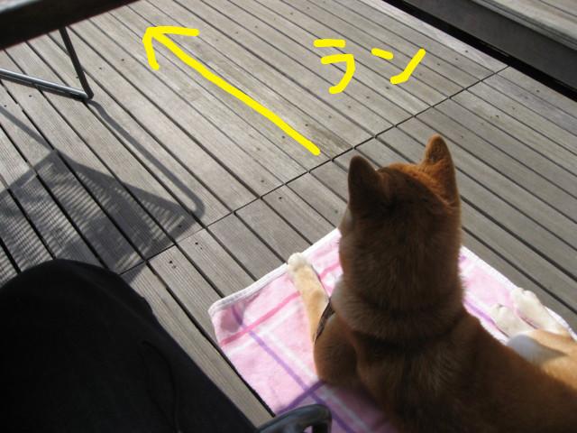 f:id:maki-mama:20090326183542j:image:w300