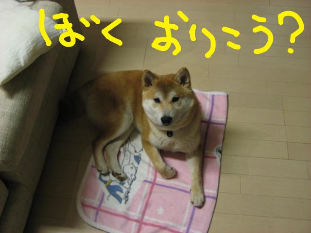 f:id:maki-mama:20090326183555j:image:w300