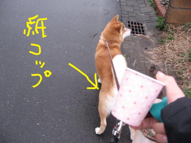 f:id:maki-mama:20090402065954j:image:w300