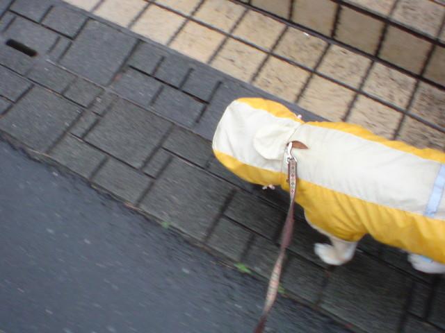 f:id:maki-mama:20090417071207j:image:w300