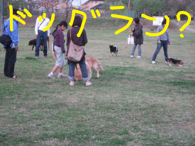 f:id:maki-mama:20090419142544j:image:w300