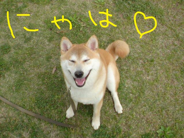 f:id:maki-mama:20090424095154j:image:w300