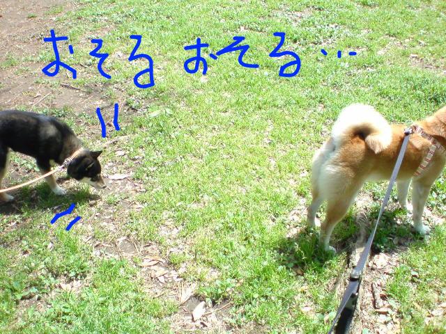 f:id:maki-mama:20090426161821j:image:w300