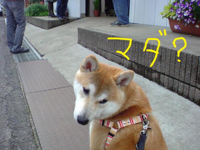 f:id:maki-mama:20090426161823j:image:w300