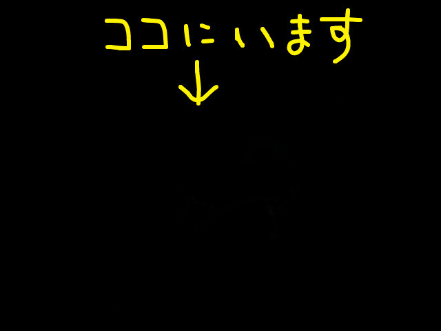 f:id:maki-mama:20090502221641j:image:w300