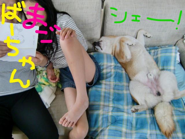 f:id:maki-mama:20090504115730j:image:w300