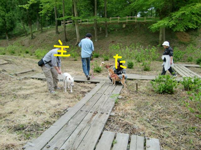 f:id:maki-mama:20090505132512j:image:w300