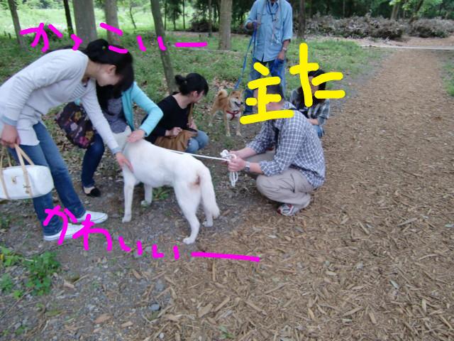 f:id:maki-mama:20090505132520j:image:w300