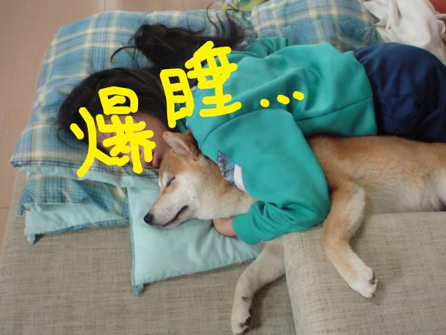 f:id:maki-mama:20090507085710j:image:w300