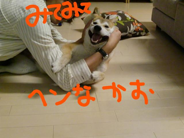 f:id:maki-mama:20090507095452j:image:w300
