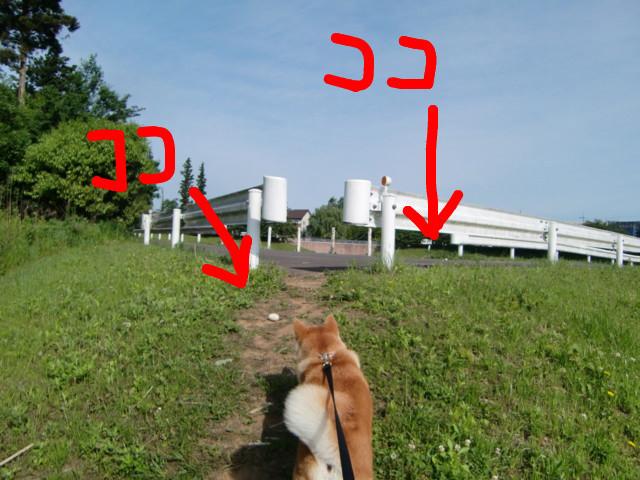 f:id:maki-mama:20090516081709j:image:w300