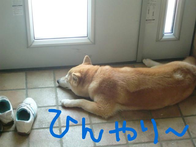 f:id:maki-mama:20090519112501j:image:w300