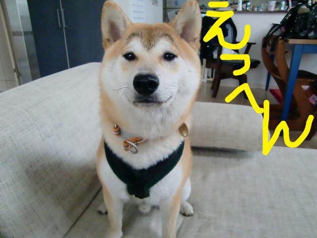 f:id:maki-mama:20090521135214j:image:w300