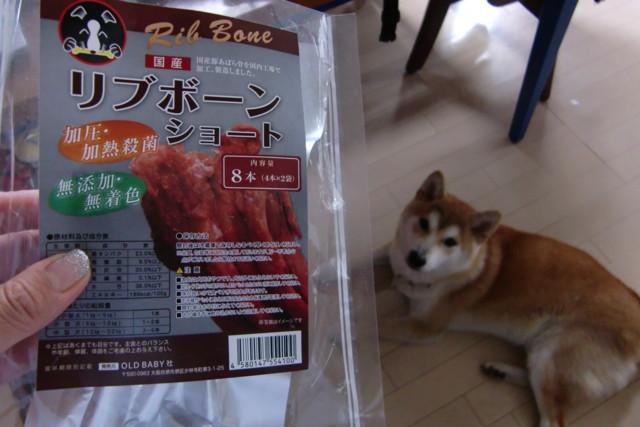 f:id:maki-mama:20090531164618j:image:w300
