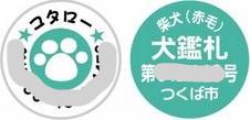 f:id:maki-mama:20090604130106j:image