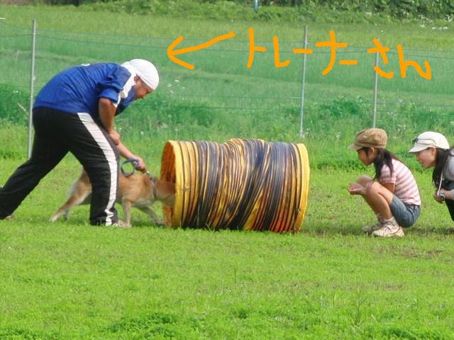 f:id:maki-mama:20090614183031j:image:w300