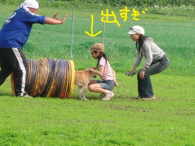 f:id:maki-mama:20090614183032j:image:w300