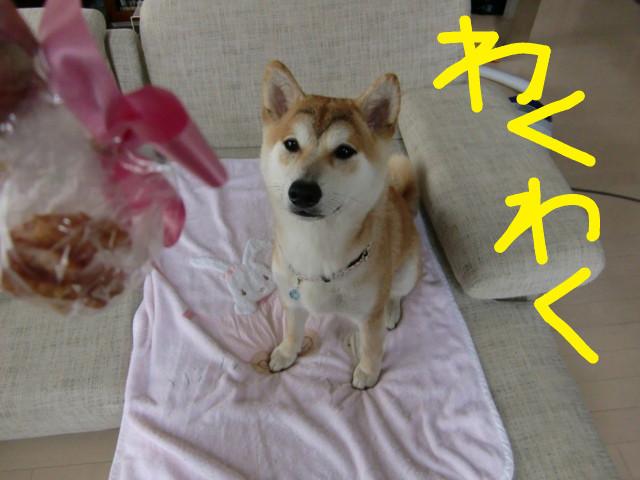 f:id:maki-mama:20090614192108j:image:w300
