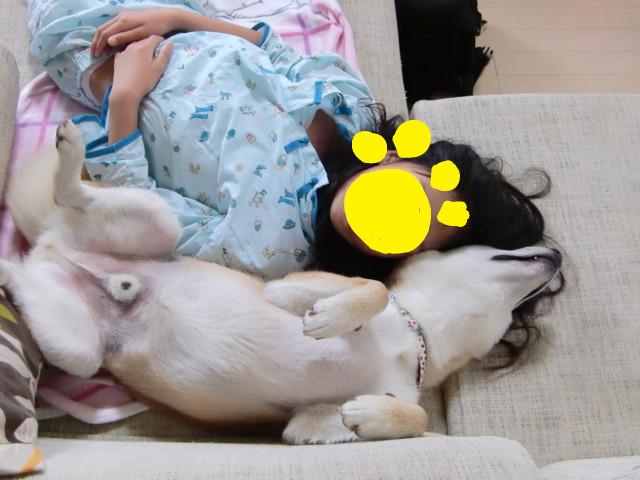 f:id:maki-mama:20090616103519j:image:w300