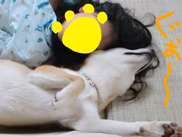 f:id:maki-mama:20090616103521j:image:w300