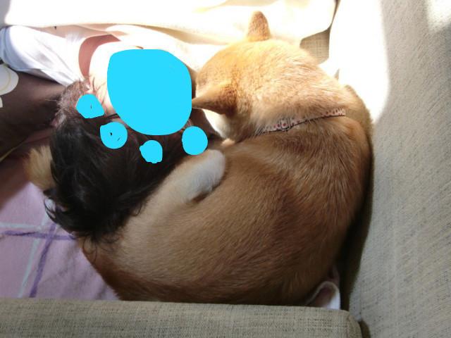 f:id:maki-mama:20090617152110j:image:w300