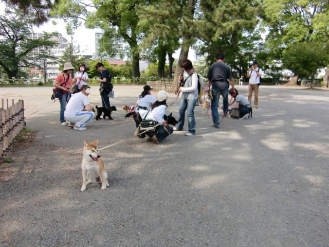 f:id:maki-mama:20090621000644j:image:w300