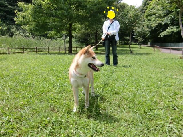f:id:maki-mama:20090621141353j:image:w300